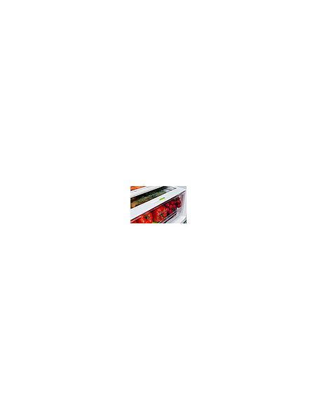 Šaldytuvas SNAIGE RF59FB-P5CB270